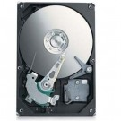 Seagate 250GB HD - 5400RPM